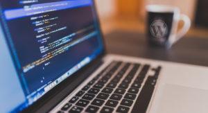 wordpress-development-feature